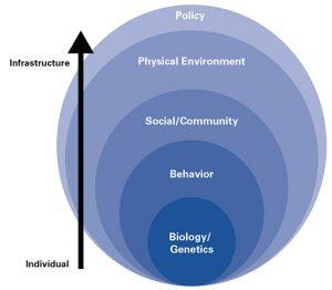 population health assessement