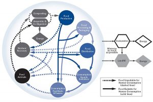 circular food system
