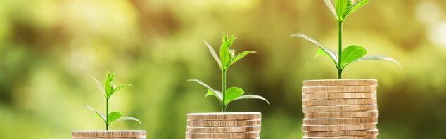 Image of money growing